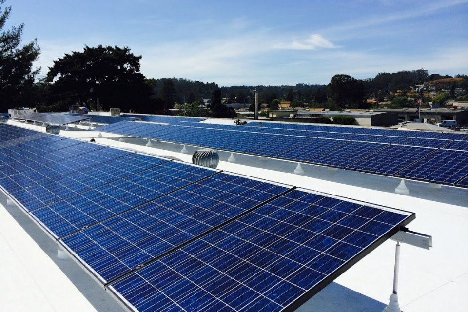 Palace is now powered by solar!